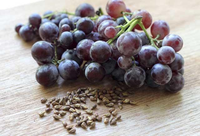 посадка винограда семенами
